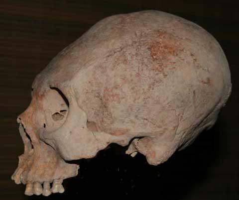 Cráneo de Colombia