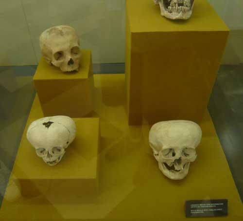 Vitrina del Museo Antropológico de Méjico