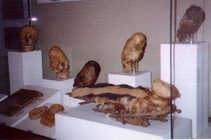 Vitrina de un museo del Perú